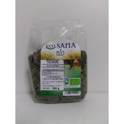 semillas calabaza